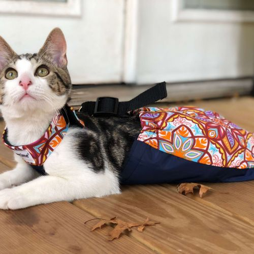 drag bag for paralyzed cat