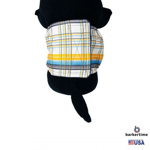 blue and yellow plaid belly band - model 2