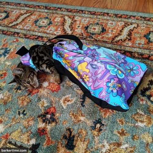 cat drag bag