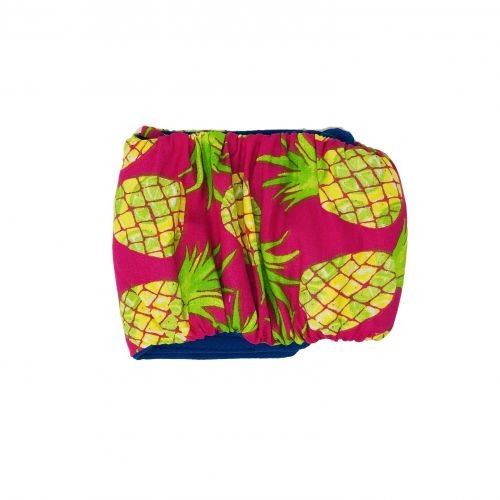 pineapple express belly band - back