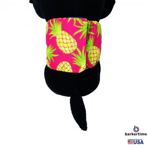 pineapple express belly band - model 2